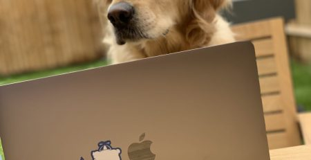 Clouvider Stickers on a MacBook with a Dog